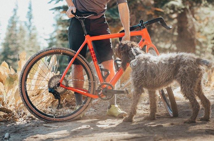 650bのタイヤでもっと自転車を楽しもう!