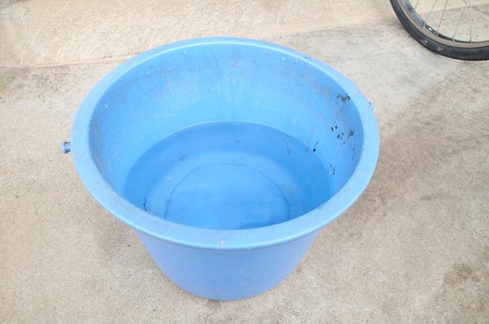 ④バケツに水を用意する