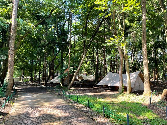 そして、キャンプ場の魅力のもう一つは、広大な敷地と豊富なサイト。