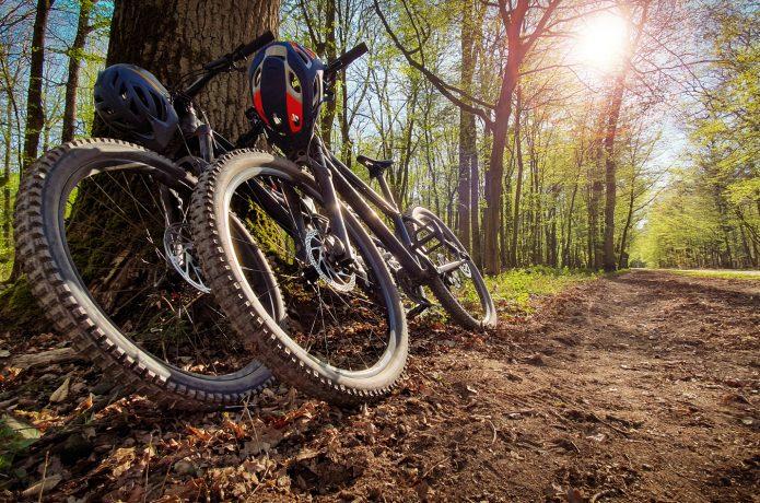 マウンテンバイクの選び方 トレイル